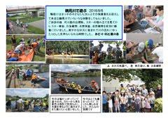 20160806川遊び