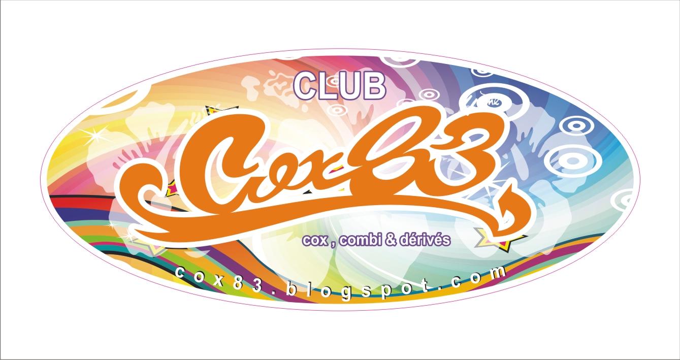 COX83 , coccinelle, vw, var, herbie , aups , kafer , combi , meeting ,aiguines , lac , verdon