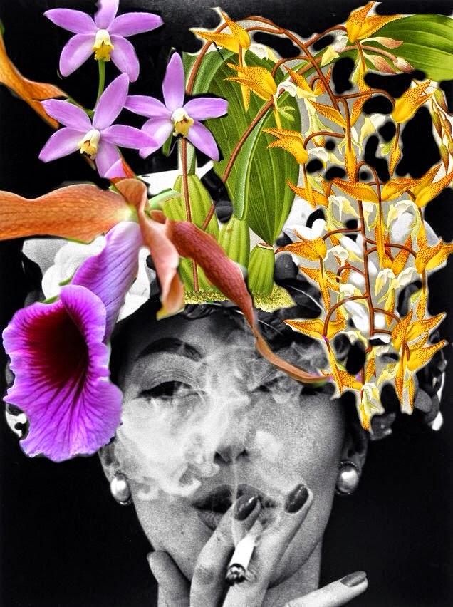 Exposiciónes de Orquideas