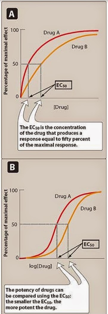 quantal and graded dose response relationship pharmacology
