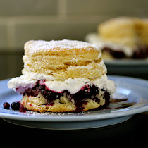 Cranberry Blueberry Shortcake