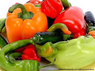 paprika hatásai, paprika használata, paprika jótékony hatásai, paprika receptek