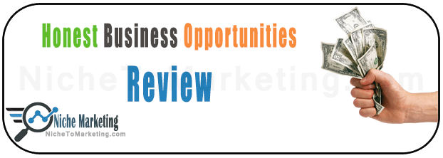 Business Opportunities Review