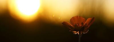 Magnifique Couverture Facebook Nature Coucher et Lever de Soleil