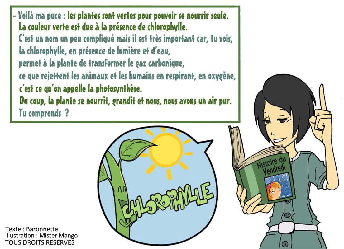 Mister mango histoire du vendredi by baronnette for Toutes les plantes vertes