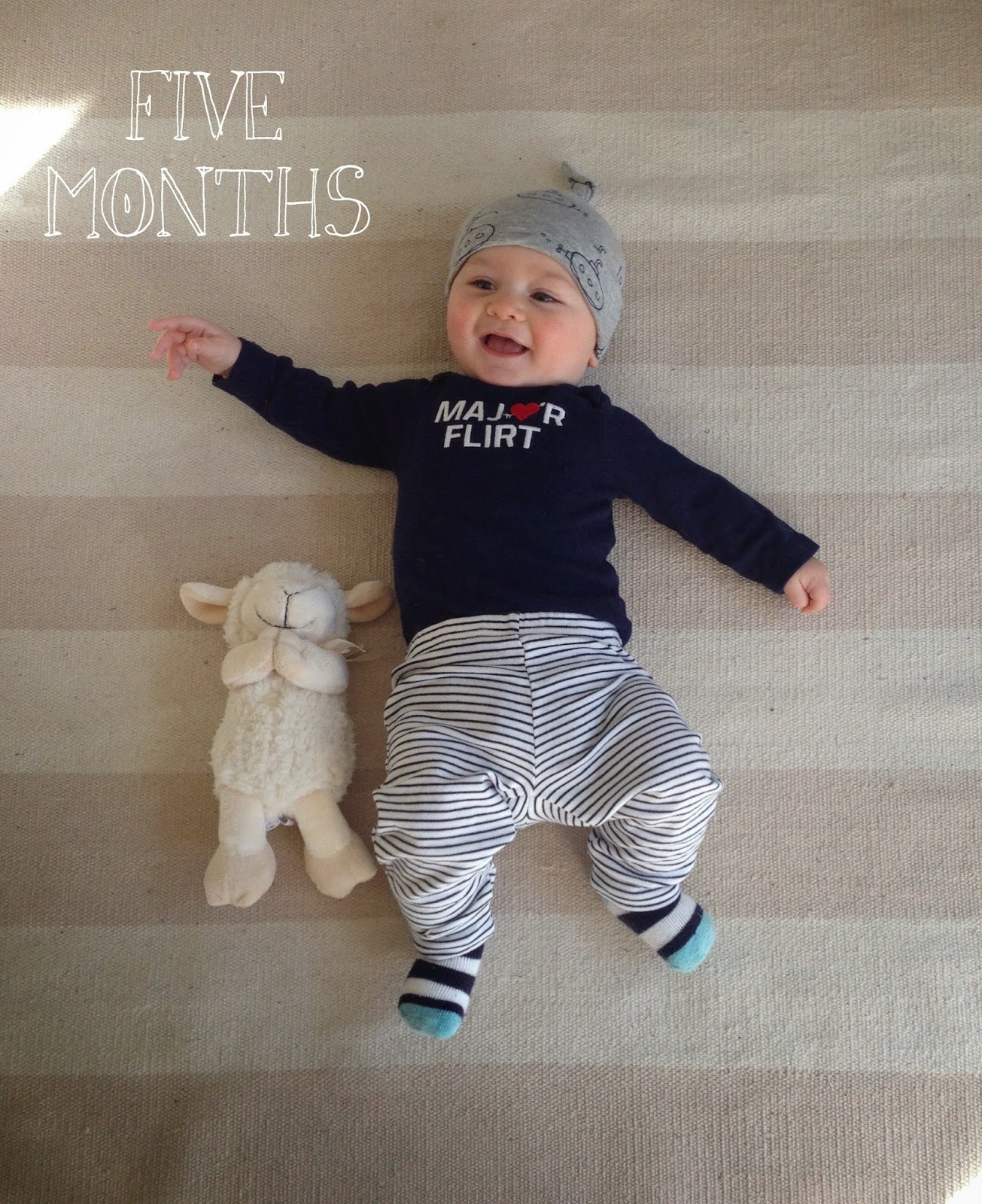 five months with skip // katiefarrin.com