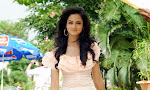 Cute Actress Shanvi latest Glamorous Photos-thumbnail
