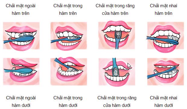 Chải răng đúng cách ngăn ngừa mảng bám gây hôi miệng