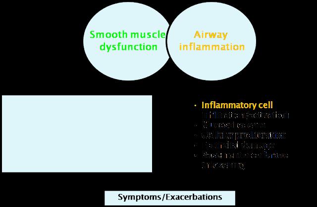 kortikosteroid inhalasi asma