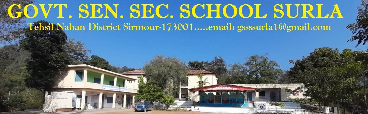Govt. Sen. Sec. School Surla
