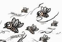 Nyamuknya satu, temannya yang banyak