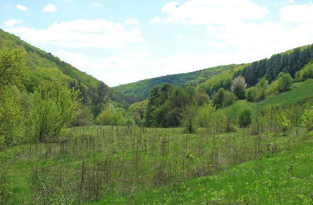 Долина Гниловодки