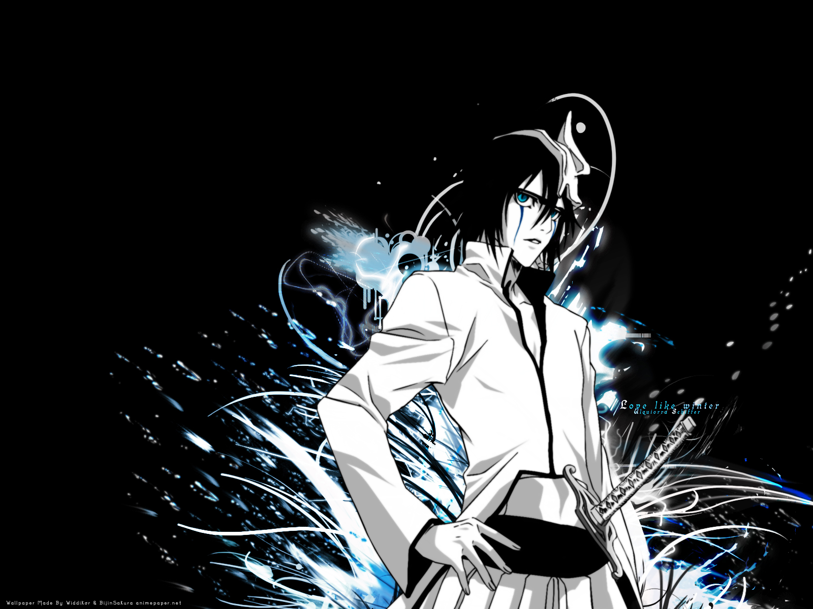2bpblogspot CcpvQWa4OWA Tv6QerKh8nI Bleach Wallpaper Espada