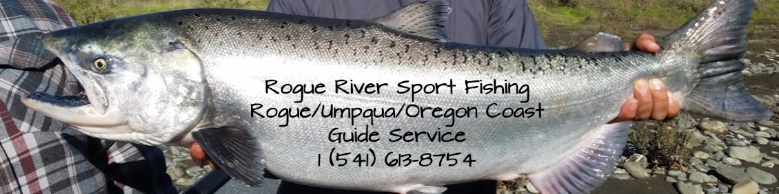 Guided Salmon and Steelhead Fishing on the Rogue, Umpqua and Oregon Coast
