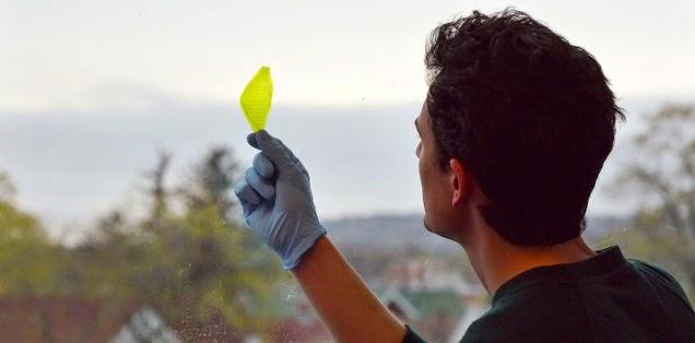 Estudiante crea la primera hoja sintética que convierte agua y luz en oxígeno