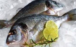 Tips Cara Menyimpan Ikan Di Kulkas Yang Benar Agar Awet