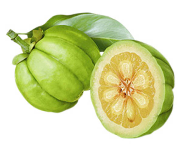 What's All the Hype about Garcinia Cambogia?