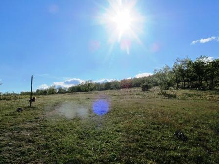 Dehesa de la Golondrina (Navacerrada) IMG_4124