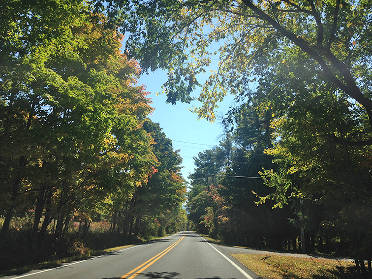 Fall colors, foliage, Upstate New York, on the road, New Paltz