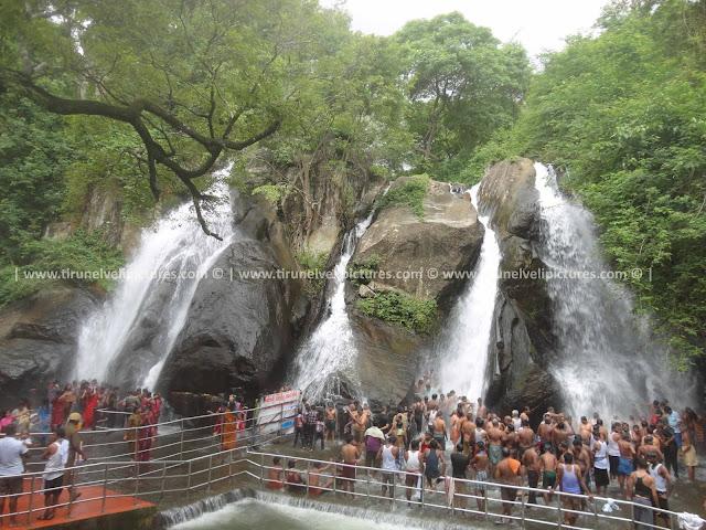 Five Falls,Courtallam, Tamil Nadu 627802, India,Tirunelveli Pictures - © www.tirunelvelipictures.com ©