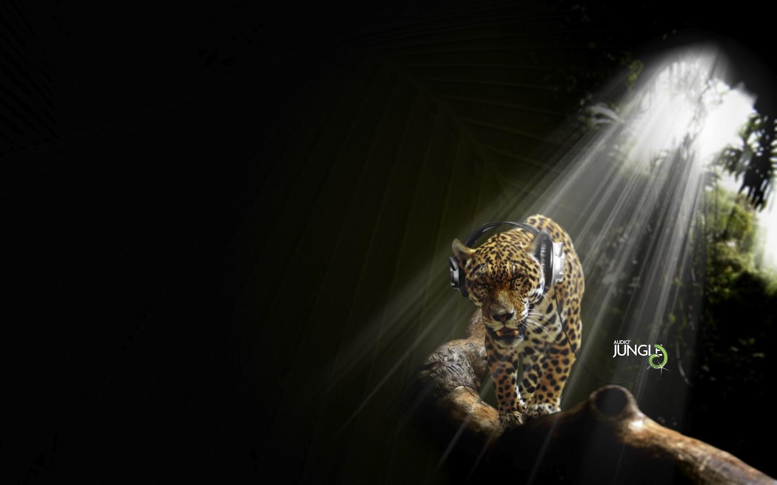 http://2.bp.blogspot.com/-cdxKKtcE-b8/UFCzsw7m_lI/AAAAAAAACCI/Ld9HjIJti4M/s1600/jaguar-audio-jungle.jpg