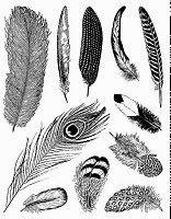 http://www.ebay.de/itm/Motiv-Stempel-Clear-stamps-Set-11-Stueck-Federn-Vogel-Federn-Artemio-10001326-/201326286325?
