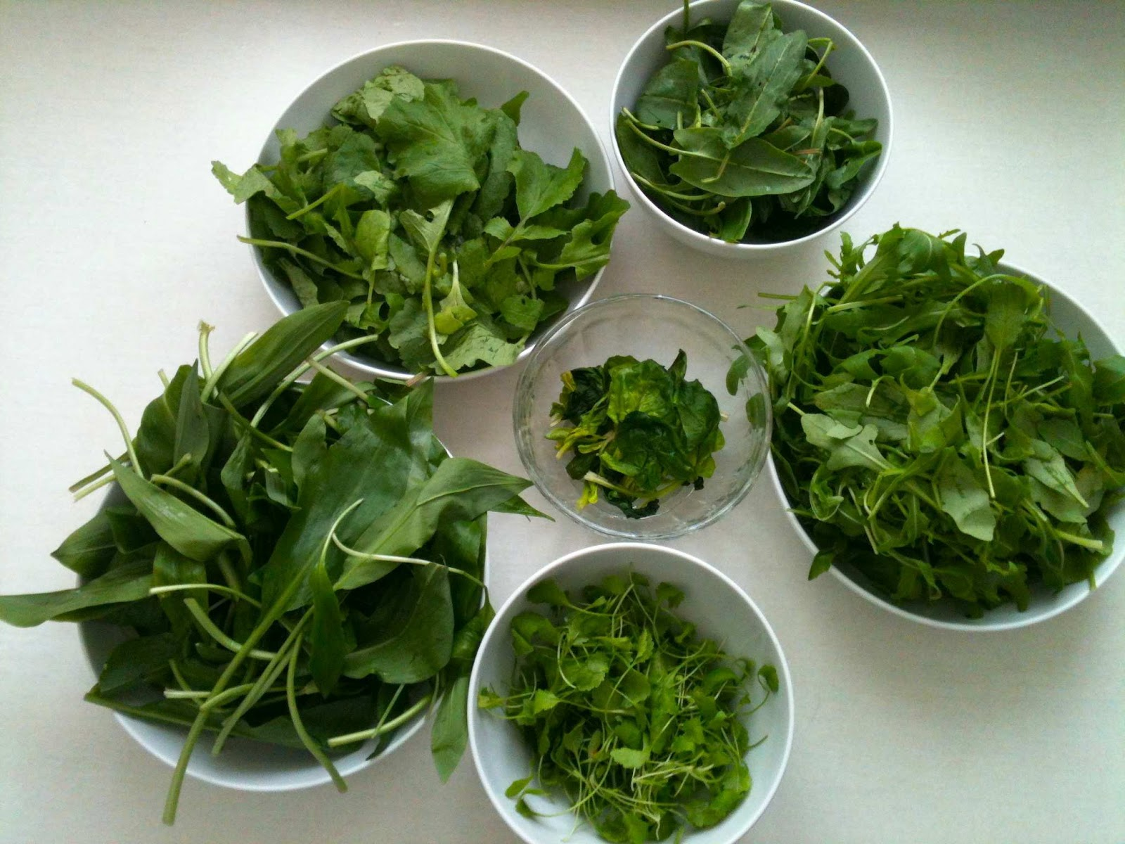 The Food and the City: spring herbs salad