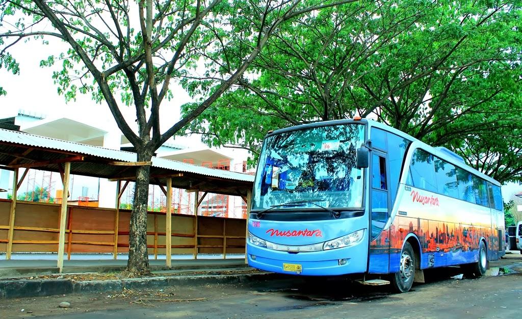 Gambar Bis Nusantara New Travego