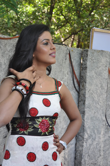 iniya @ mouna guru movie team press meet photo gallery