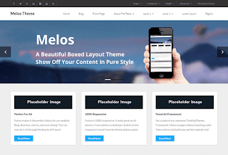 wordpress professional themes : Melos Theme