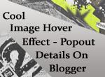 popout-details-blogger