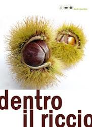 1°CONTEST DI DENTRO LA PENTOLA