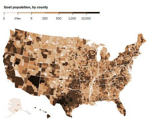 All In All Goats Outnumber People In 21 U S Counties All But One Of Which Are In Texas Post Map Of Goat Populations By County In 2012
