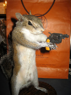 Taxidermy squirrel with a gun from the Wild Few