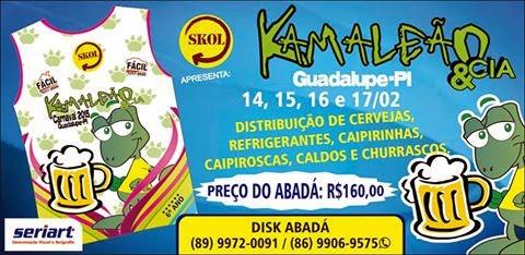 BLOCO KAMALEÃO NO CARNAVAL 2015