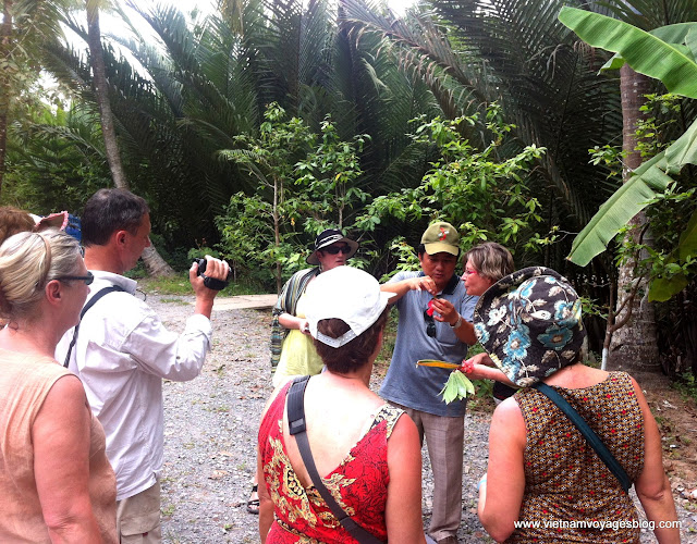 Robert et ses amies au Vietnam Mars 2013