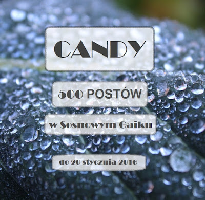 Candy do 20.01.