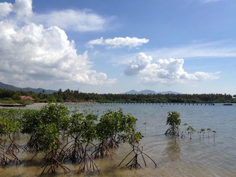 View Pantai Pasir Putih