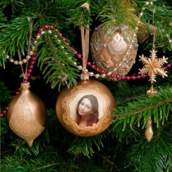 2014+%25285%2529 Ornament image effect by using photofunia 2014 new