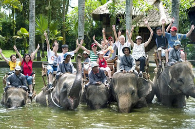 Bali Elephant Ride