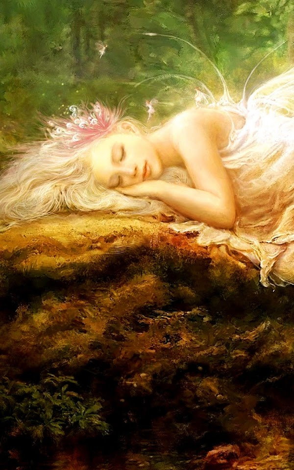 Fairy Sleeping Fantasy  Galaxy Note HD Wallpaper