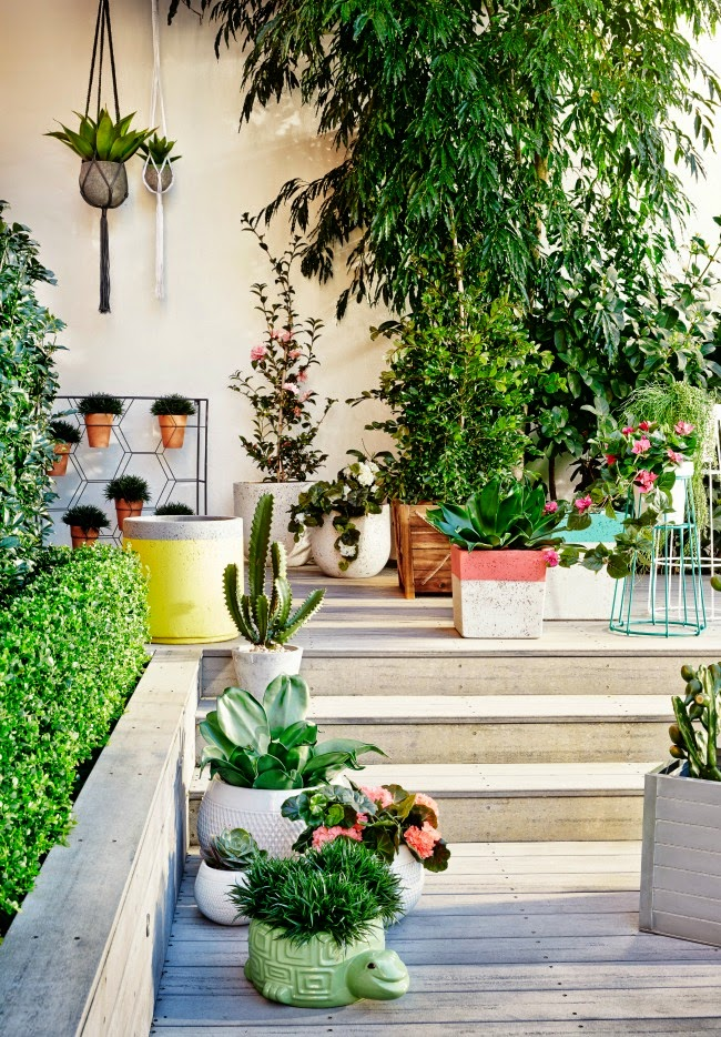 Kylie jackes outdoor living for Courtyard designs adelaide