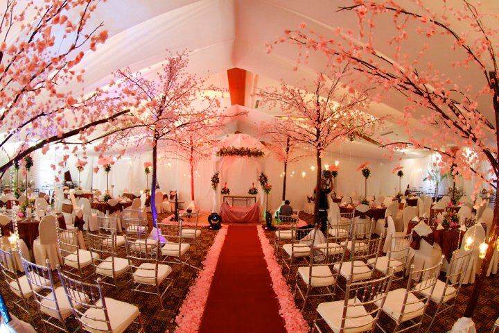 Cherry Blossom Decoration Ideas
