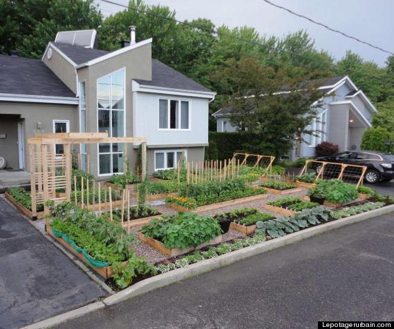Backyard Kitchen Garden: Sustainable Urban Gardens ... The Blog: Illegal Front Yard