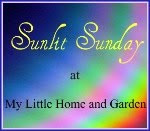 ☀ Sunlit Sunday will run from Jan. 16th through March 27th
