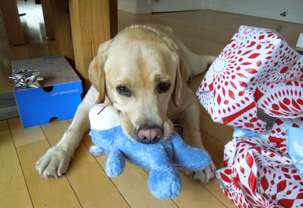 Labrador Cooper Christmas toy