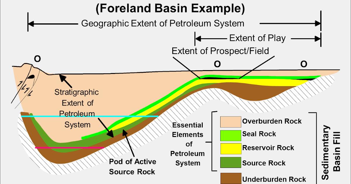 полевой определитель ключевых биотопов и