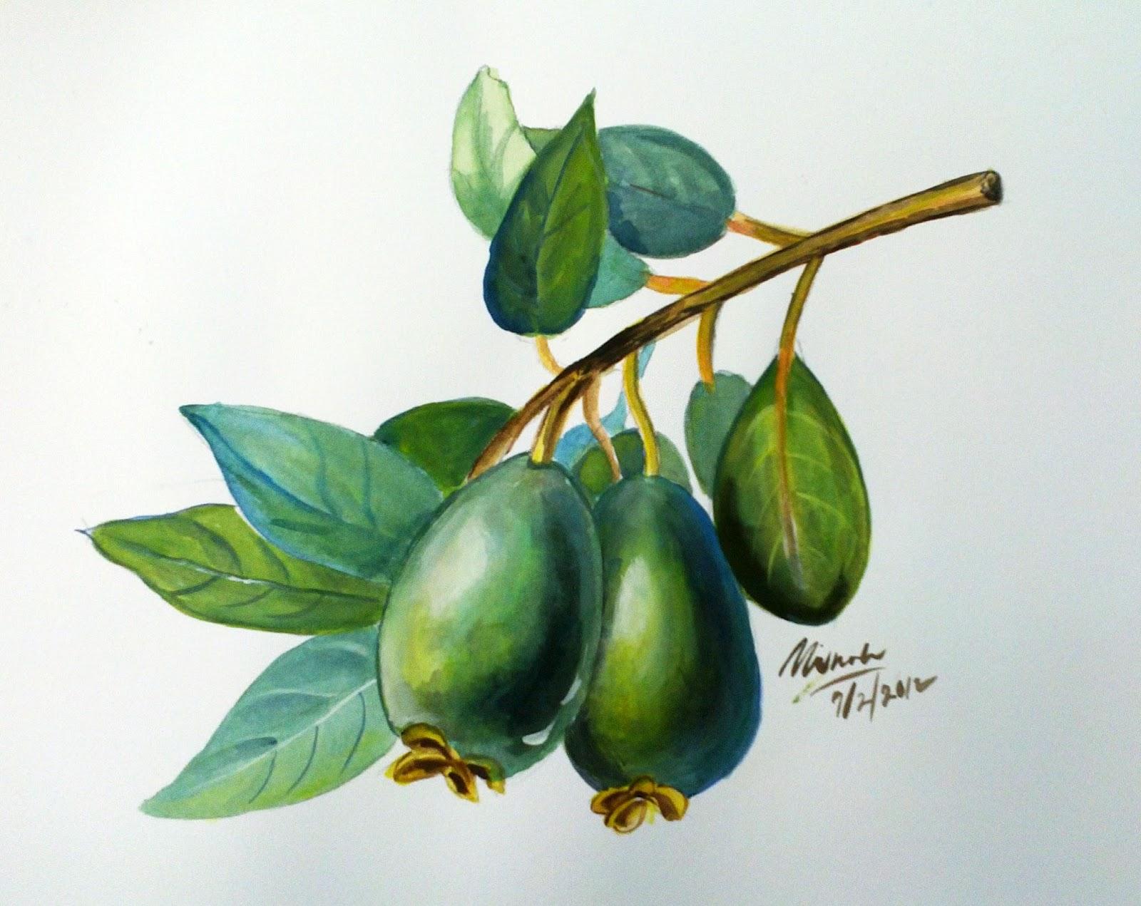 Alat Bantu Mengajar Lukisan Dan Catan Buah Buahan