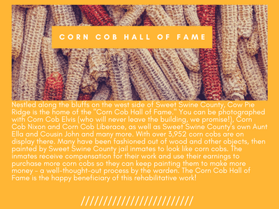 Corn Cob Hall of Fame admits Corn Cob Elvis looks more like Slim Whitman then Elvis!