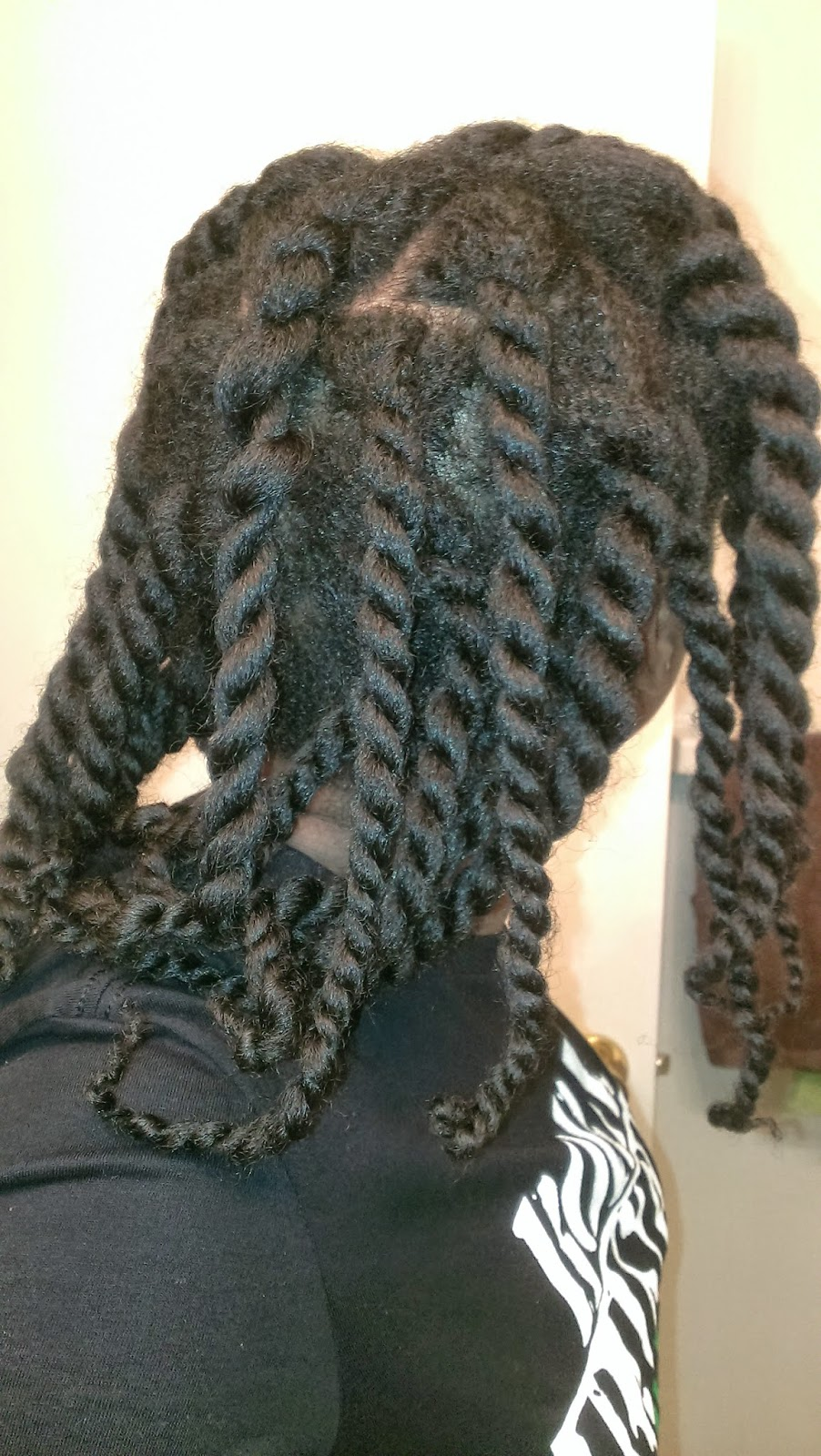 chunky two strand twists